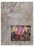 Fleur De Fleur I Fine Art Print