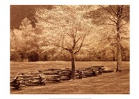"Smokies Fence by Wendy Caro - 28"" x 20"""
