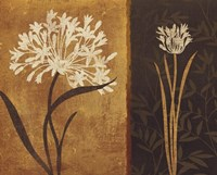"""Yin Yang II by Lisa Audit - 20"""" x 16"""""""