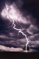 Lightning Striking Tree II Fine Art Print