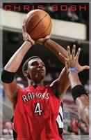 "22"" x 34"" Toronto Raptors"
