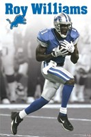 Lions - Williams Wall Poster