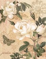 Gardeners Gift I Fine Art Print