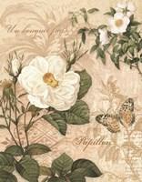 Gardeners Gift II Fine Art Print