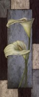 "Tall Lilies II by Debbie Cole - 8"" x 20"""