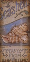 """Treasures From The Sea by Kim Lewis - 8"""" x 16"""" - $9.49"""