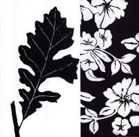 Black And White II Fine Art Print