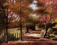 Autumn Country Road Fine Art Print