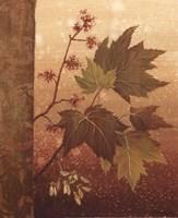 """Maple Leaves - mini by Jillian Jeffrey - 8"""" x 10"""""""