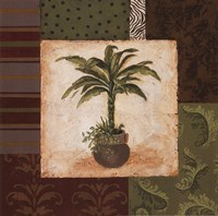 """Potted Palm II by Pamela Smith-Desgrosellier - 12"""" x 12"""", FulcrumGallery.com brand"""