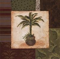 Potted Palm II Fine Art Print