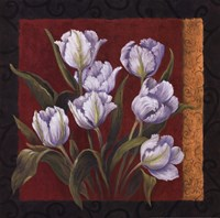 "20"" x 20"" White Tulips"
