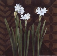 "Narcissus on Brown I by Kathrine Lovell - 12"" x 12"""