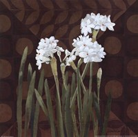 "Narcissus on Brown II by Kathrine Lovell - 12"" x 12"""