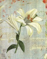 """Spring Lily II by Katie Pertiet - 16"""" x 20"""", FulcrumGallery.com brand"""
