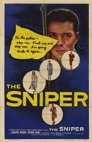 "Sniper by John James Audubon - 11"" x 17"" - $15.49"