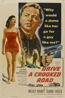 "Drive a Crooked Road by John James Audubon - 11"" x 17"" - $15.49"