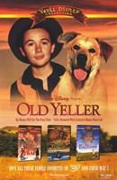 "Old Yeller - Walt Disney - 11"" x 17"""