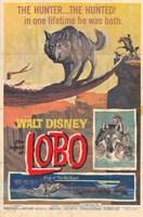 "The Legend of Lobo - 11"" x 17"""