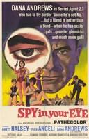 """Spy in Your Eye - 11"""" x 17"""""""