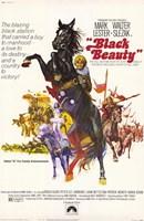"Black Beauty - 11"" x 17"""