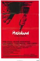 """Rosebud - 11"""" x 17"""""""