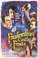 "Frankenstein's Castle of Freaks - 11"" x 17"""