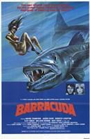 "Barracuda - 11"" x 17"" - $15.49"
