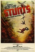 "Stunts - 11"" x 17"""