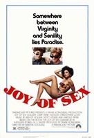"""Joy of Sex - 11"""" x 17"""""""
