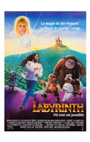 """Labyrinth - French - 11"""" x 17"""""""