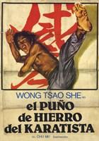 "Punisher of Iron Karate - 11"" x 17"""