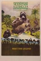 """Mountain Gorilla (IMAX) - 11"""" x 17"""""""