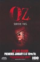 """Oz - 11"""" x 17"""", FulcrumGallery.com brand"""