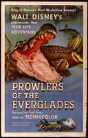 """Prowlers of the Everglades - 11"""" x 17"""""""