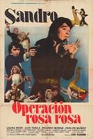 "Operation Rosa Rosa - 11"" x 17"""