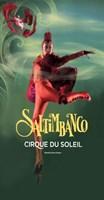 Cirque du Soleil - Saltimbanco? Fine Art Print