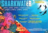 "Sharkwater - 17"" x 11"" - $15.49"