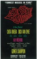 """Bye Bye Birdie (Broadway) - 11"""" x 17"""" - $15.49"""