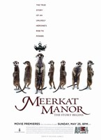 "Meerkat Manor (TV) - 11"" x 17"" - $15.49"