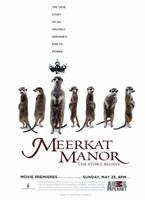 """Meerkat Manor (TV) - 11"""" x 17"""""""
