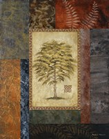 "Eucalyptus Tree II by Michael Marcon - 16"" x 20"" - $13.49"