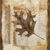 "Fall I by Patricia Pinto - 12"" x 12"""