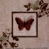 """Butterfly Study I by Hakimipour - Ritter - 6"""" x 6"""""""