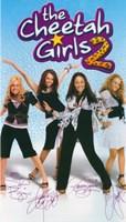"The Cheetah Girls 2 - 11"" x 17"", FulcrumGallery.com brand"