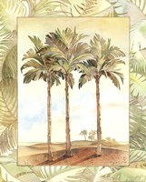 "Palm Tree IV by Bradley Clark - 16"" x 20"""
