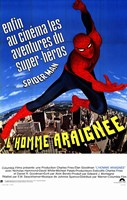 The Amazing Spider-Man - cartoon Fine Art Print