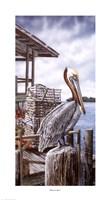Pelican Key Fine Art Print