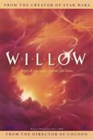 "Willow - 11"" x 17"", FulcrumGallery.com brand"