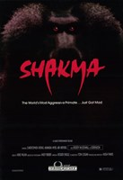 "Shakma - 11"" x 17"""